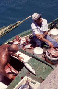 blogg-en-o-i-atlanten-fiskare
